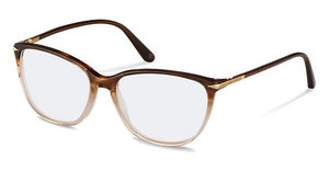 Claudia Schiffer C4010 B brown gradient