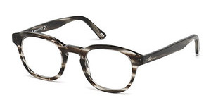 Web Eyewear WE5203 020