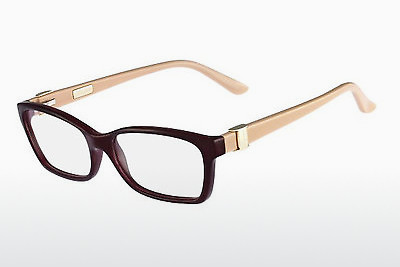 Brilles Salvatore Ferragamo SF2649 604