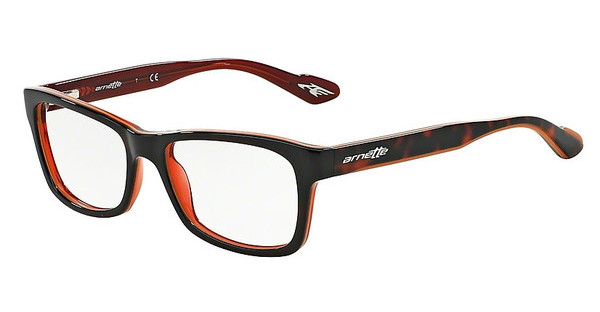 Arnette AN7038 1102 TOP HAVANA ON ORANGE
