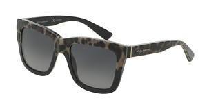 Dolce & Gabbana DG4262 1995T3 POLAR GREY GRADIENTTOP LEO ON BLACK