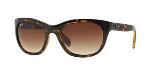 Ray-Ban RB4216 710/13 BROWN GRADIENTLIGHT HAVANA