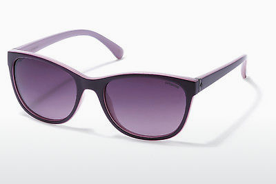 Saulesbrilles Polaroid P8339 C6T/JR - Purple