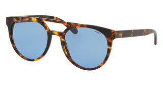 Polo PH4134 530972 LIGHT BLUEVINTAGE TORTOISE